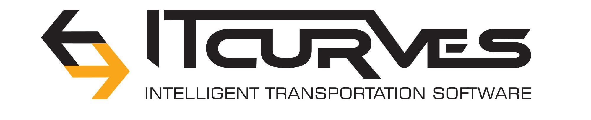 IT Curves Logo